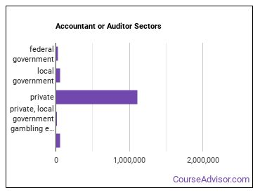 Accountant or Auditor Sectors