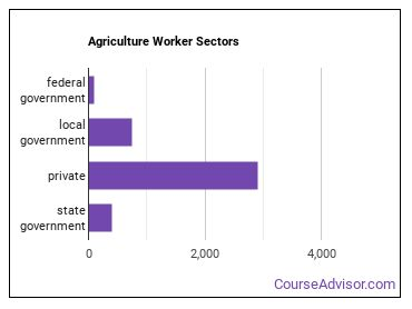 Agriculture Worker Sectors