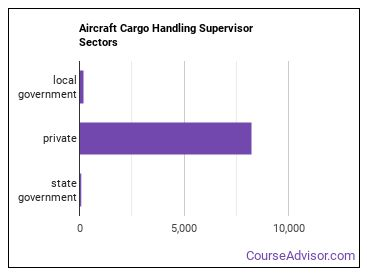 Aircraft Cargo Handling Supervisor Sectors
