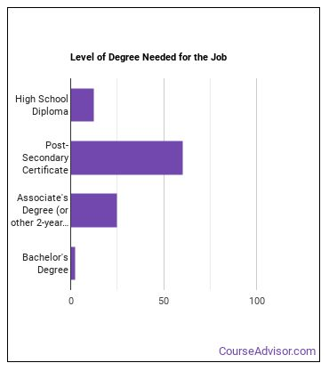 Aircraft Mechanic or Technician Degree Level