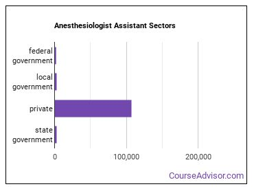 Anesthesiologist Assistant Sectors