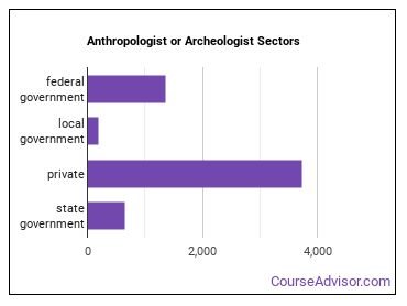 Anthropologist or Archeologist Sectors