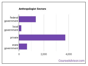 Anthropologist Sectors