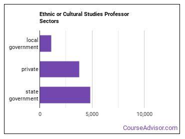 Ethnic or Cultural Studies Professor Sectors