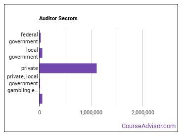 Auditor Sectors