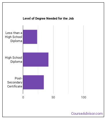 Automotive Body Repairer Degree Level