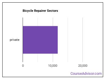 Bicycle Repairer Sectors