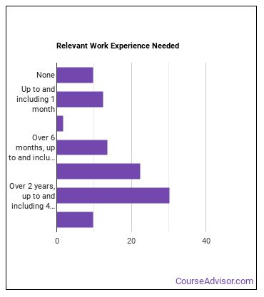 News Analyst Work Experience
