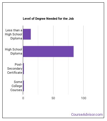 Transit and Intercity Bus Driver Degree Level