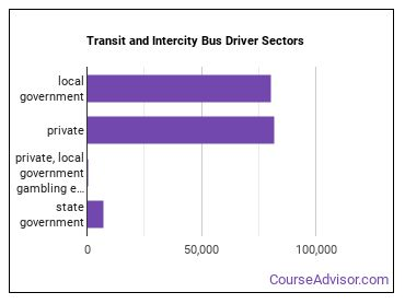 Transit and Intercity Bus Driver Sectors