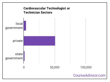 Cardiovascular Technologist or Technician Sectors