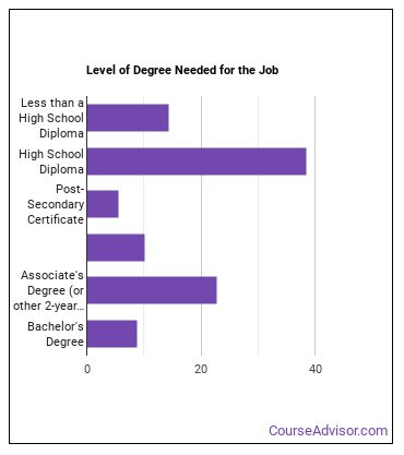 Childcare Worker Degree Level