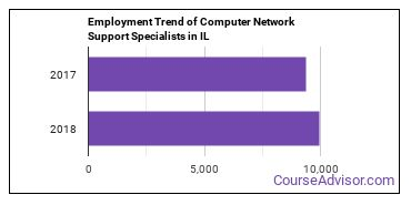 Computer Network Support Specialists in IL Employment Trend