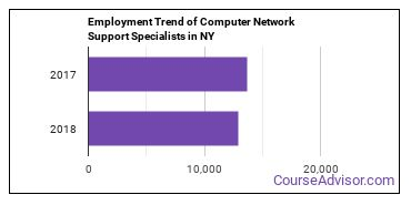 Computer Network Support Specialists in NY Employment Trend