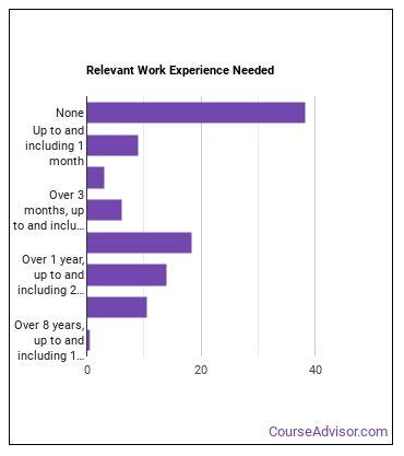 Counter & Rental Clerk Work Experience