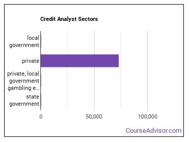 Credit Analyst Sectors