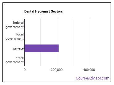 Dental Hygienist Sectors