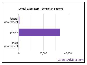 Dental Laboratory Technician Sectors