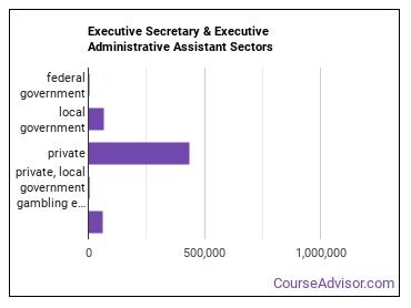 Executive Secretary & Executive Administrative Assistant Sectors