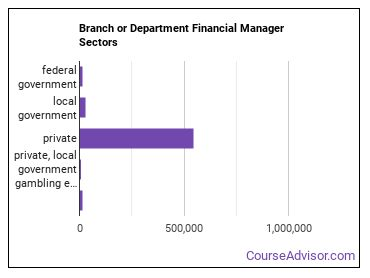 Branch or Department Financial Manager Sectors