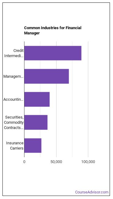 Financial Manager Industries