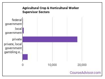 Agricultural Crop & Horticultural Worker Supervisor Sectors