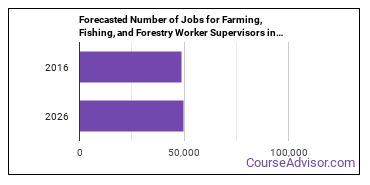 Forecasted Number of Jobs for Farming, Fishing, and Forestry Worker Supervisors in U.S.