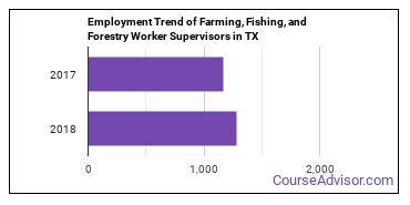 Farming, Fishing, and Forestry Worker Supervisors in TX Employment Trend