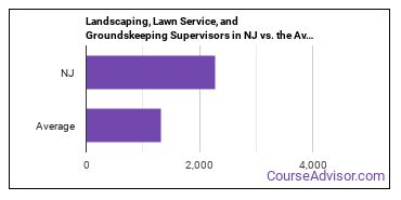 Landscaping, Lawn Service, and Groundskeeping Supervisors in NJ vs. the Average State