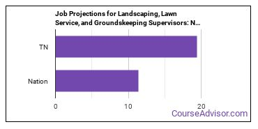 Job Projections for Landscaping, Lawn Service, and Groundskeeping Supervisors: Nation vs. TN