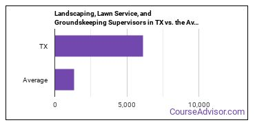 Landscaping, Lawn Service, and Groundskeeping Supervisors in TX vs. the Average State