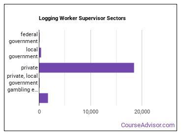 Logging Worker Supervisor Sectors