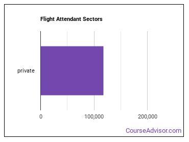 Flight Attendant Sectors