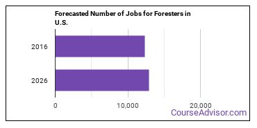 Forecasted Number of Jobs for Foresters in U.S.