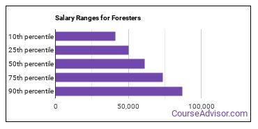 Salary Ranges for Foresters