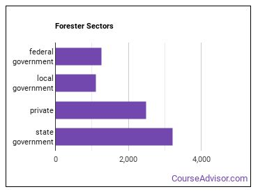 Forester Sectors