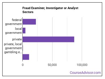 Fraud Examiner, Investigator or Analyst Sectors