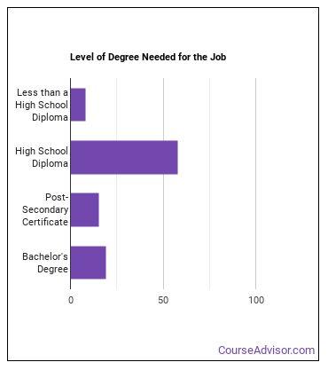 Gem & Diamond Worker Degree Level