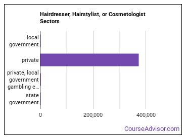 Hairdresser, Hairstylist, or Cosmetologist Sectors