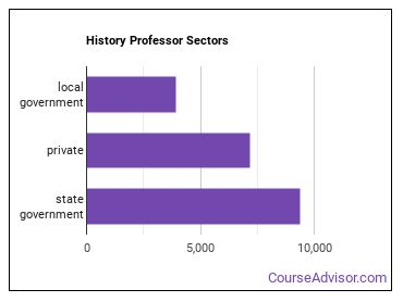 History Professor Sectors