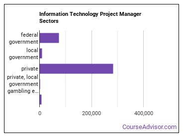 Information Technology Project Manager Sectors