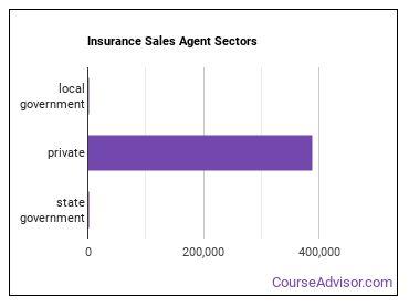 Insurance Sales Agent Sectors