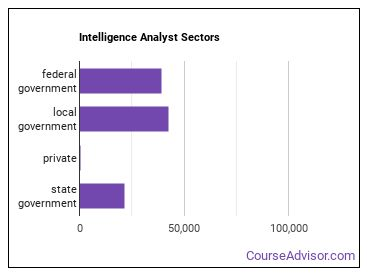 Intelligence Analyst Sectors