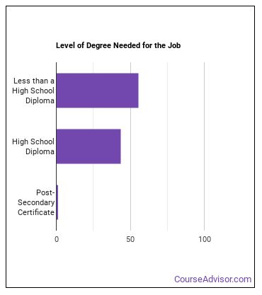 Logging Equipment Operator Degree Level