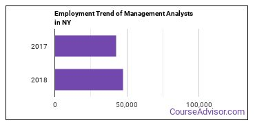 Management Analysts in NY Employment Trend