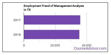 Management Analysts in TX Employment Trend