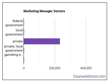 Marketing Manager Sectors