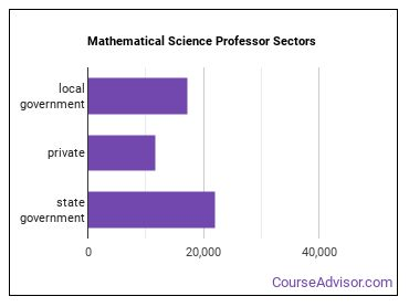 Mathematical Science Professor Sectors