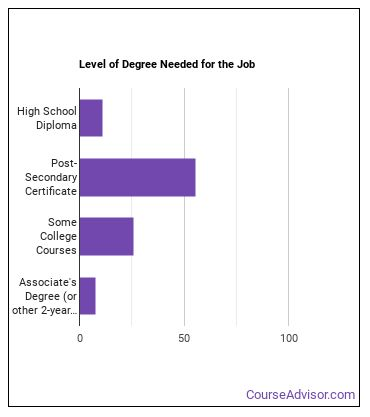 Medical Transcriptionist Degree Level