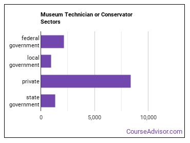 Museum Technician or Conservator Sectors
